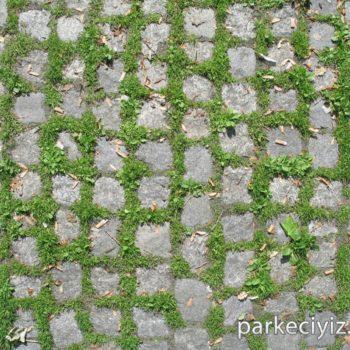 Tas Duvar Kod 042 350x350 Taş Duvar Dokuları