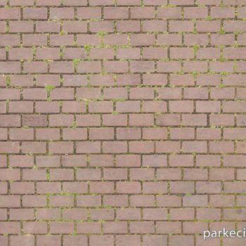 Arnavut Dokular Kod 040 350x350 Arnavut Dokular
